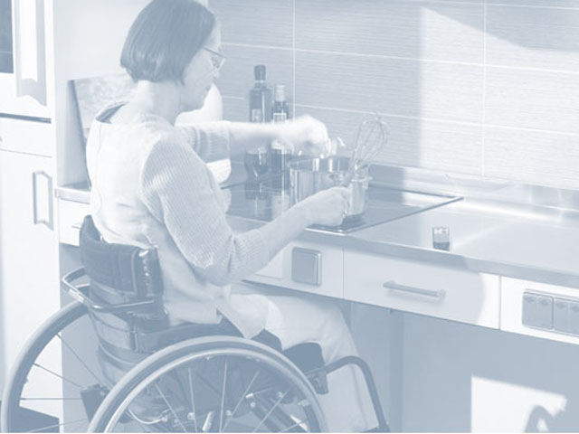 Reasonable Accommodations and Modifications link