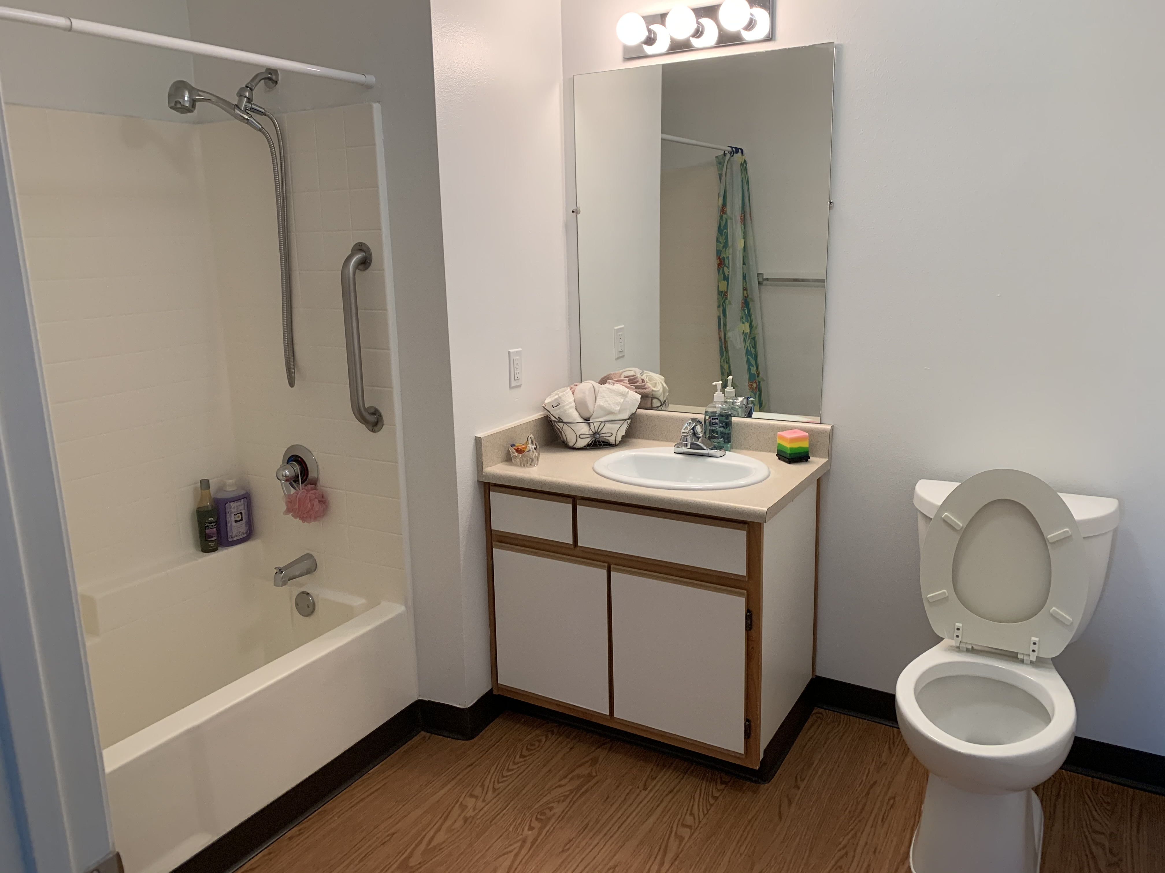 View of a bathroom. The bathtub has a grab bar and the shower head has hose. Next to it is a sink with lower canbinet, a mirror above it, and three light bulbs above the mirror, and a toilet next to the sink Room has wood flooring.